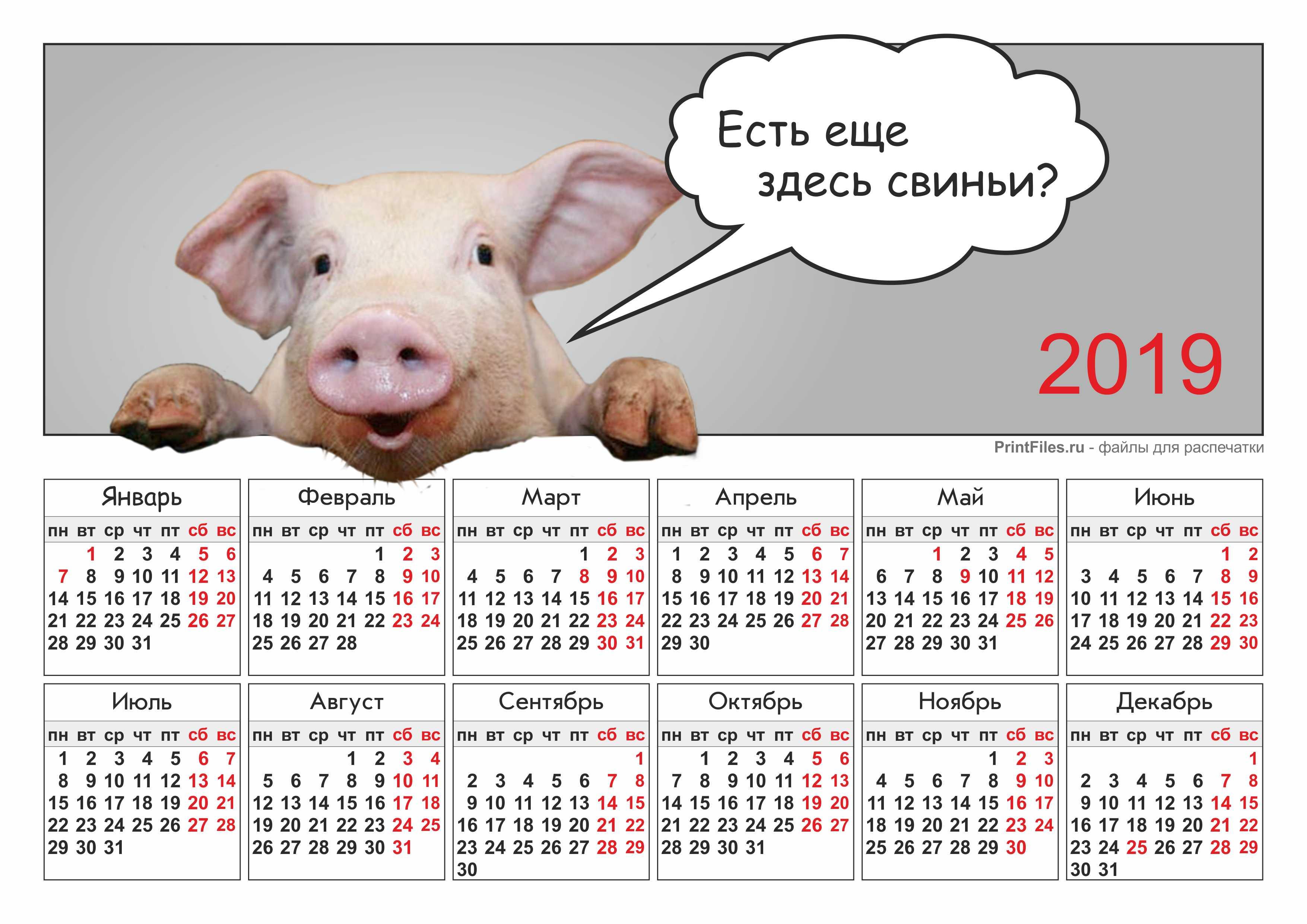 Прикольно, красивые календари на 2019 год распечатать формат а4