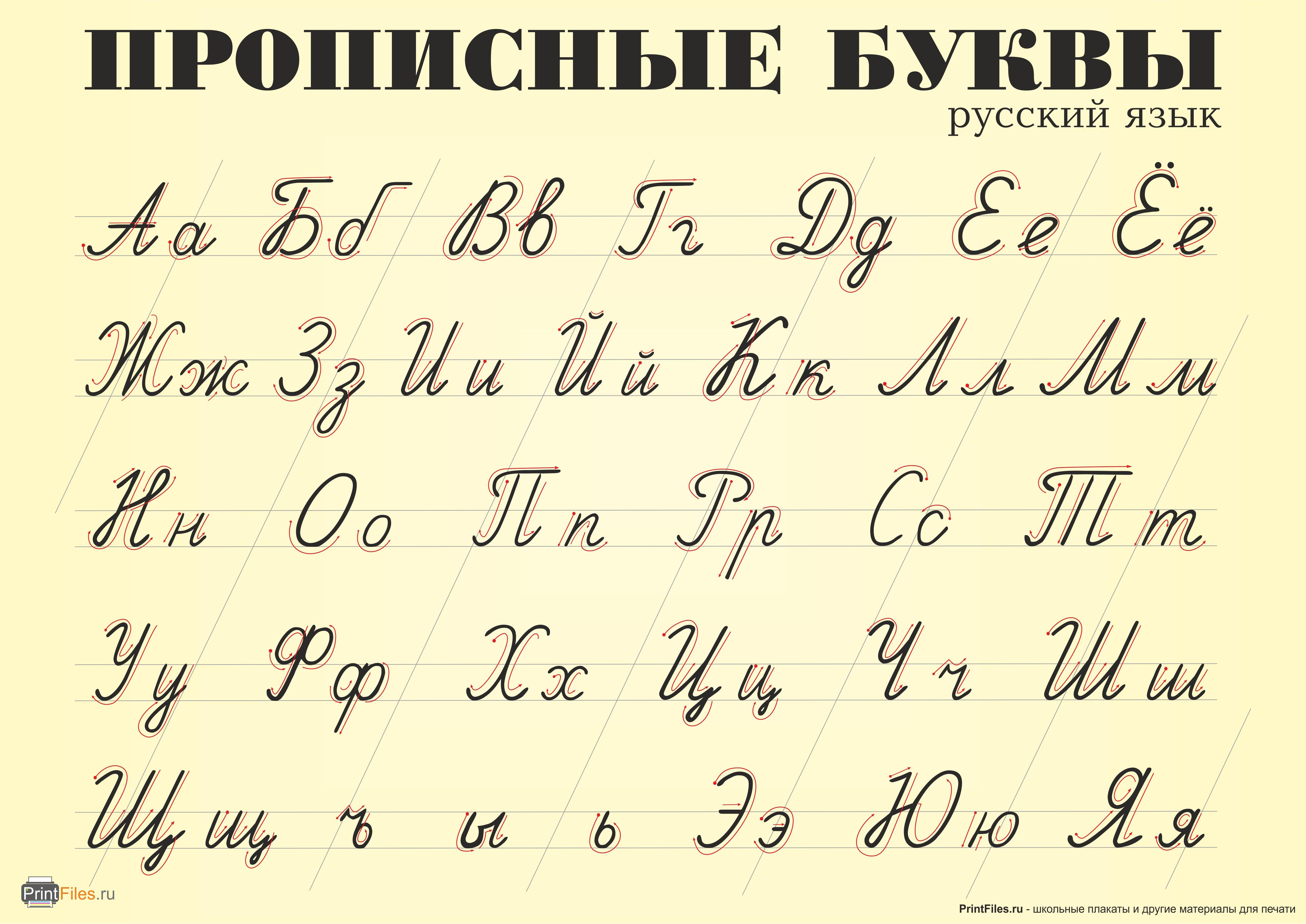 картинки алфавит прописной также занимается