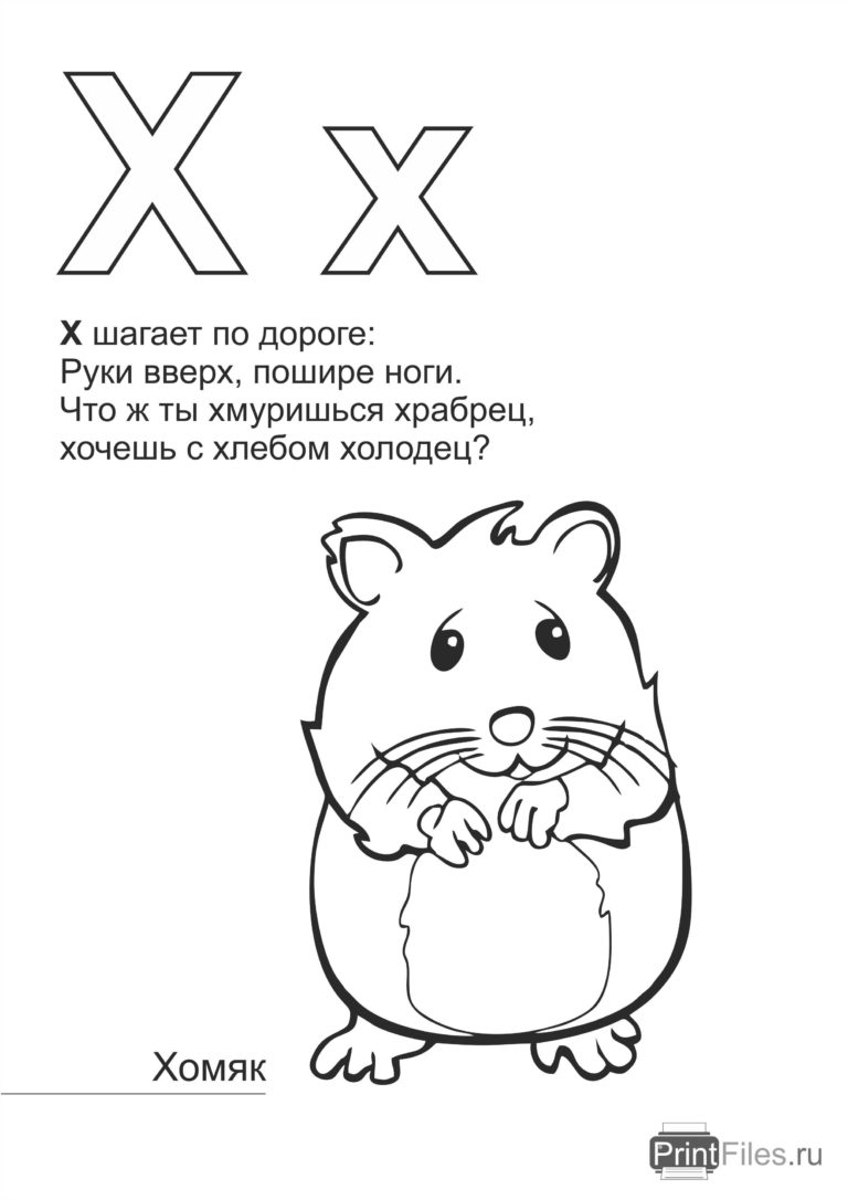 Pets hamster coloring pages